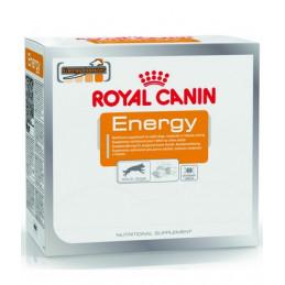 Royal Canin Nutritional Supplement Energy Zdrowy Przysmak dla Psów Dorosłych i Aktywnych 50g
