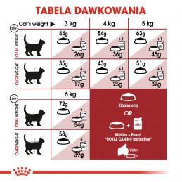 Royal Canin Regular Fit 32 Adult - Karma Sucha dla Kotów Dorosłych Otymalna Masa Ciała 4kg