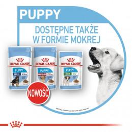 Royal Canin Medium Puppy - Karma Sucha dla Szczeniąt, Rasy Średnie 4kg