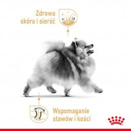 Royal Canin Breed Pomeranian Adult - Karma Mokra Pasztet dla Psów Dorosłych Rasy Szpic Miniaturowy 85g