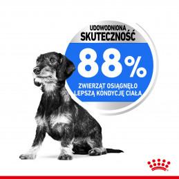 Royal Canin Mini Light Weight Care Adult - Karma Odchudzająca Rasy Małe, Psy Dorosłe 1kg