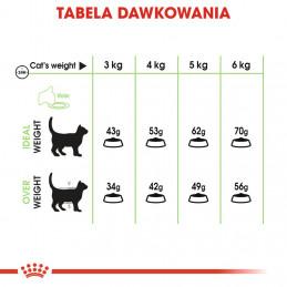 Royal Canin Digestive Care Adult - Karma Sucha dla Kotów Dorosłych, Wspomagająca Proces Trawienia 10 kg