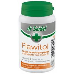 DR SEIDEL Flawitol dla...
