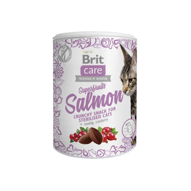 Brit Care Cat Przysmak Superfruits Salmon ŁOSOŚ 100g